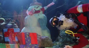 SeaLife e Babbo Natale subacqueo