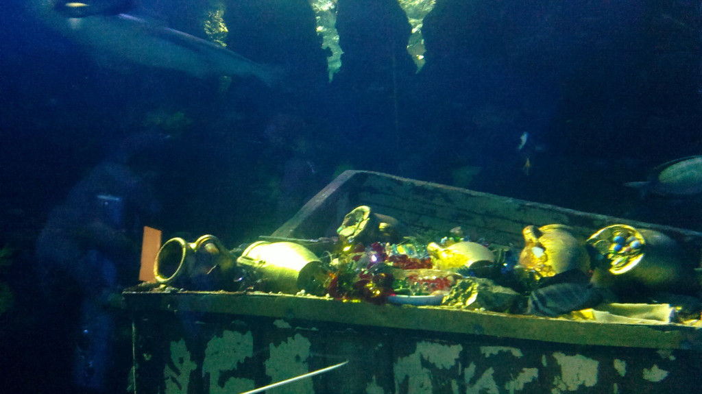 Sea Life Tesoro sommerso